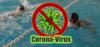 Schwimmen-Corona